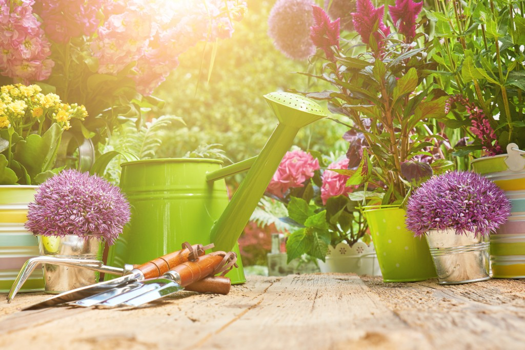 gardening tools and plants in pots